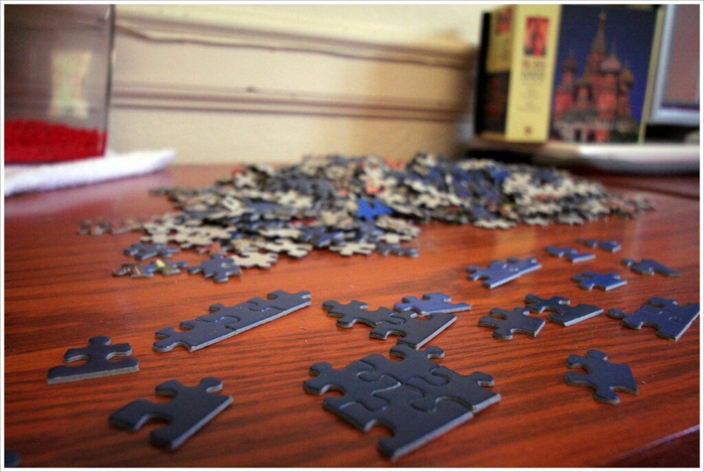 The Start of The Puzzle